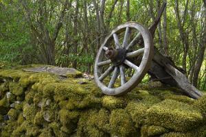 Omatoiminen pyöräretki Muhun saarella