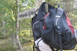 Jussi nature trail