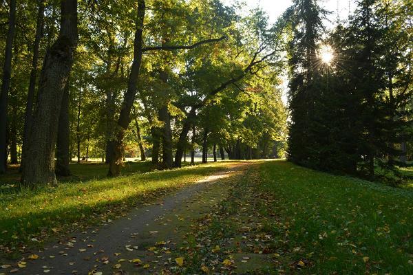 Luunjan kartanon puisto