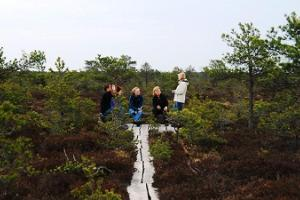 Tuhu Bog and Hiking Trail