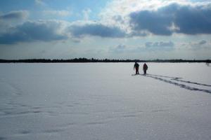 Lumikenkäretki Sirtiksen suolla Alutagusella