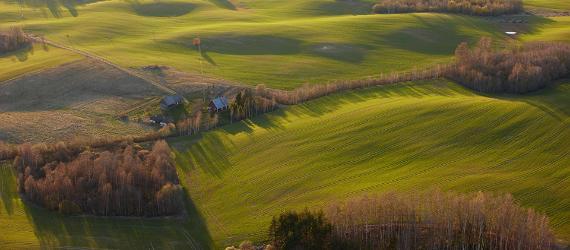 Hills-and-valleys-in-Estonia