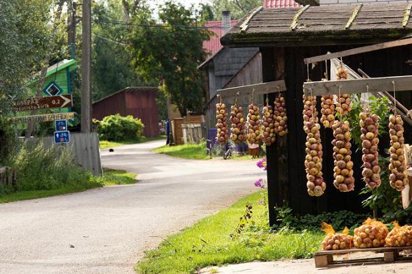 No Lahemā pa Sīpolu ceļu uz Tartu