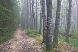 Oandu-Ikla hiking trail