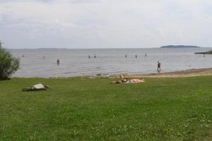 Repinas pludmale