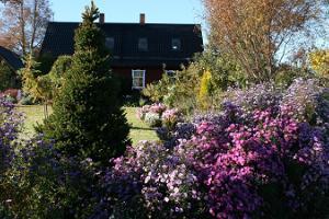 Palusalu trädgård