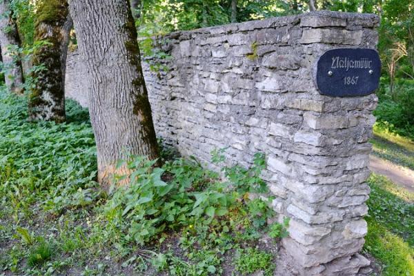 Der Naturlehrpfad Vana-Vigala