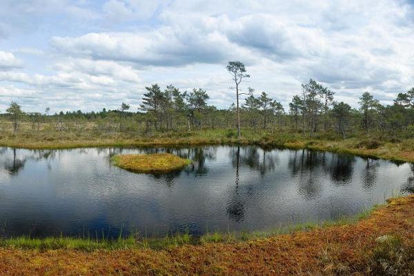 Jalase maastiku- ning küla kaitseala