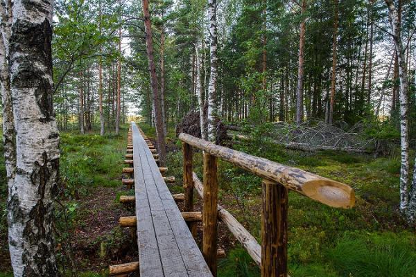Туристическая тропа Мянникъярве
