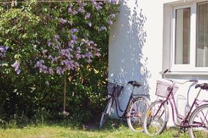 Kihnu Sadama Öömaja jalgrattalaenutus