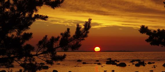 Sunset-in-Estonia