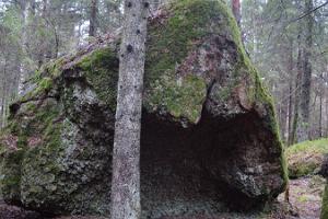 Konati loodusrada ja telkimisala