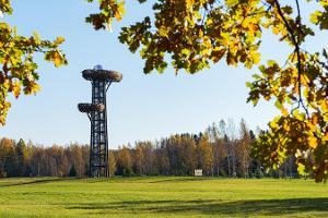 """Reuges (Rõuge) skatu tornis """"Pesapuu"""""""