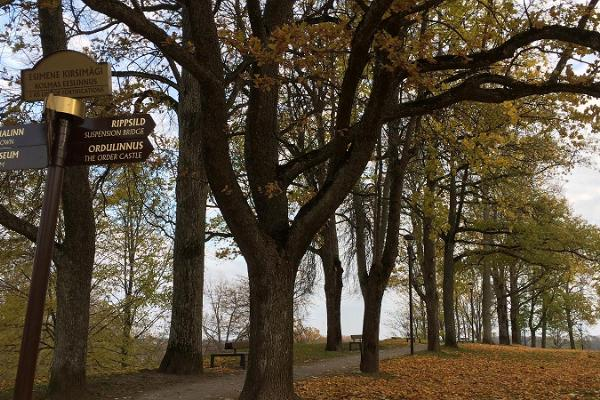 Viljandin linnanpuisto