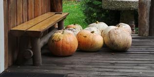 Visit Estonia, holiday, pumpkins, Martinmas, St Catherine's day