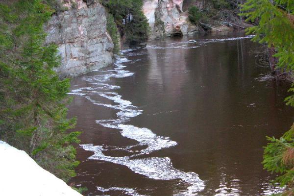 Uthyrning av sparkstöttingar i Taevaskoja Salamaa