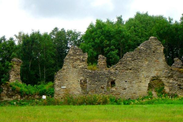 Angerja vasall-linnuse varemed