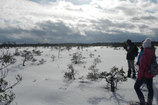 Lumeräätsamatk Kõrvemaal
