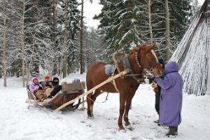 Reesõit Pärnumaa talvises looduses
