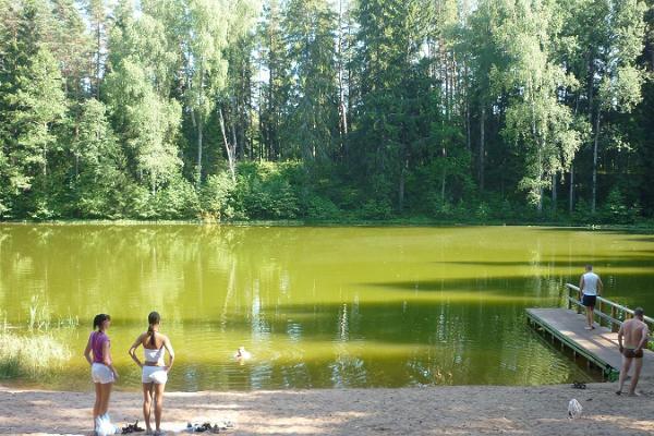 Recreation areas by Jõuga lakes