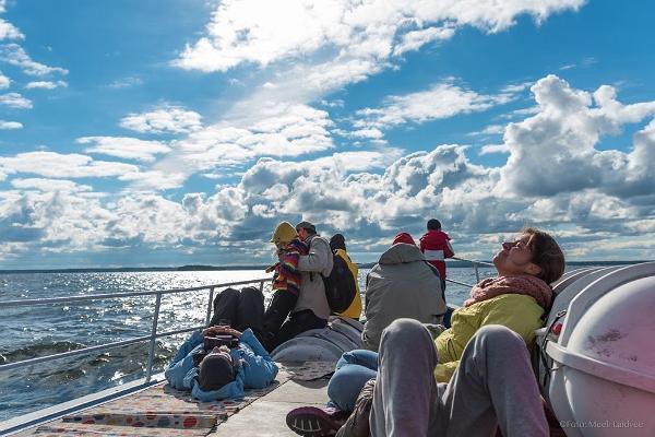 Säännölliset hylkeiden tarkkailuretket Kolgan lahden saaristoon kesällä 2019