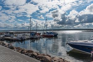 Regelbundna sälskådningsturer kring Kolgavikens öar under sommaren 2019!