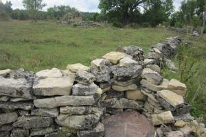 Pikavere küla kiviaiad