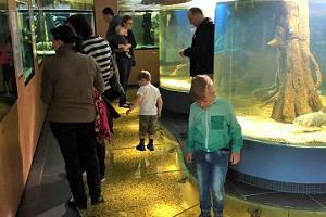Ezera muzejs