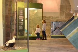 Saarenmaan museo