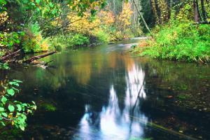 Canoe trip on River Elva