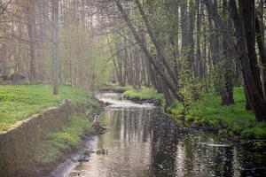 Stadtpark von Kärdla