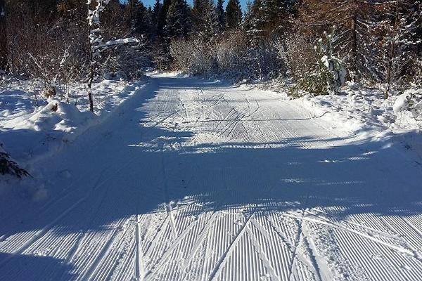 Paliveres tūrisma un veselības sporta centra slēpošanas trases