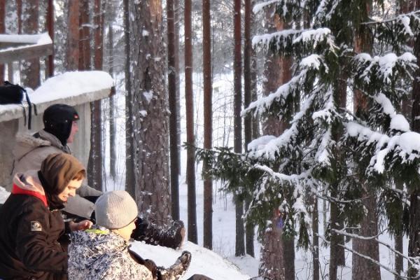 Rodelberg in Jõulumäe