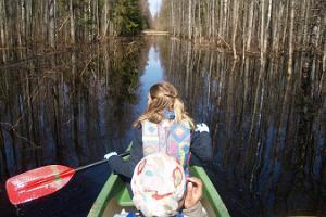 Soomaa.com kanuumatk üleujutatud metsas