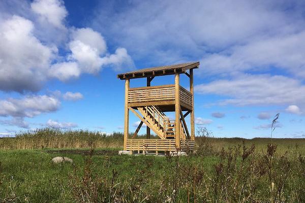 Vihasoo putnu vērošanas tornis