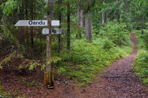 Oandu forest nature trail