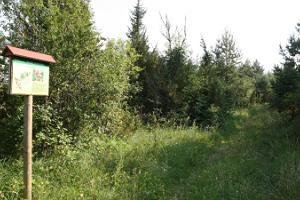 Saunja hiking trail