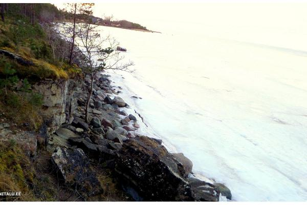 Pulli klints (Oiu klints)