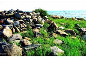 Порт и пляж Таалику