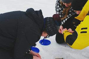 Тур подлёдной рыбалки на озере Вийтна с началом в Таллинне