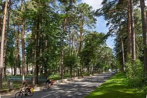 Narva-Jõesuun Pime-puisto (Pimeä puisto)