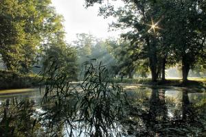 Park des Gutshofs Uuemõisa (dt. Neuenhof)