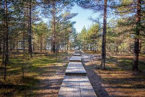 Peraküla – Aegviidu – Ähijärve hiking trail