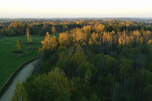 Kääriku hiking trails