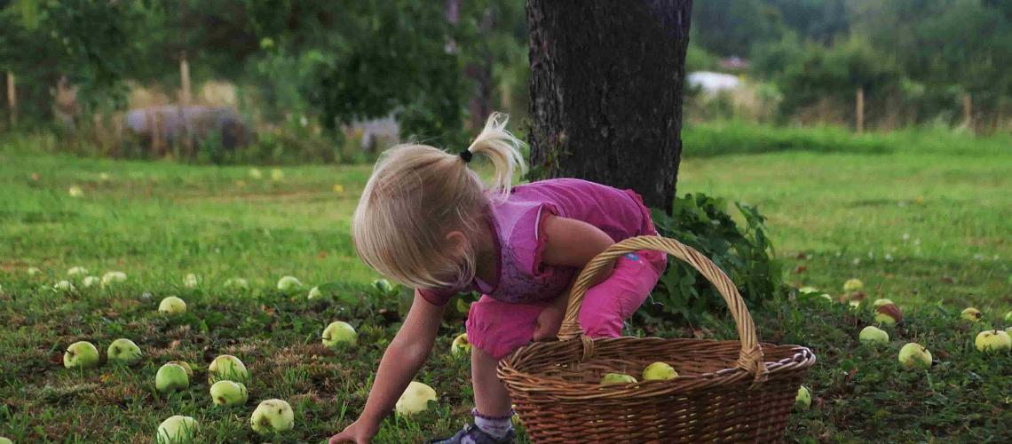 Tori Siidrifarm, puhkus maal, Puhka Eestis