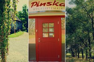 Viesu nams Pinska