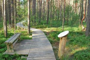 RMK Rannametsa-Tolkuse Nature and Study Trail