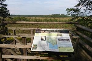 Lindin luonnonsuojelualueen näkötorni