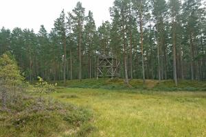 Lindi Nature Conservation Area observation tower