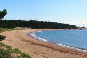 Ristna strand